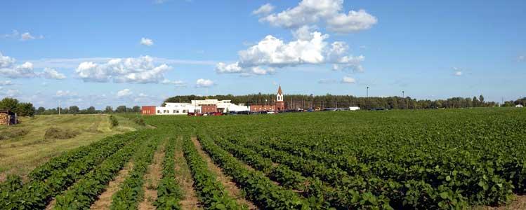 Farmland around Our Saviour's